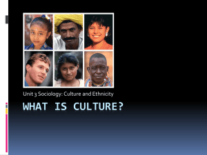 what is culture? - Sociology at Girton