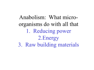 Anabolism: What micro-organisms do with all that 1. Reducing