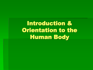 Introduction & Orientation to the Human Body