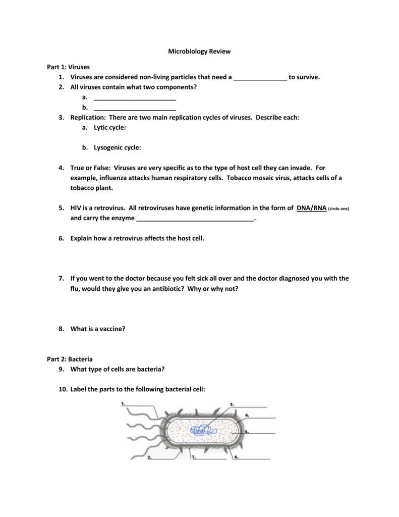 microbiology review sheet for exercises Tip sheet study tips for biology classes it gives you a chance to review what you covered in class and make sure you didn't miss anything.