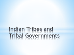 Indian Tribes and Tribal Governments Who is an Indian?