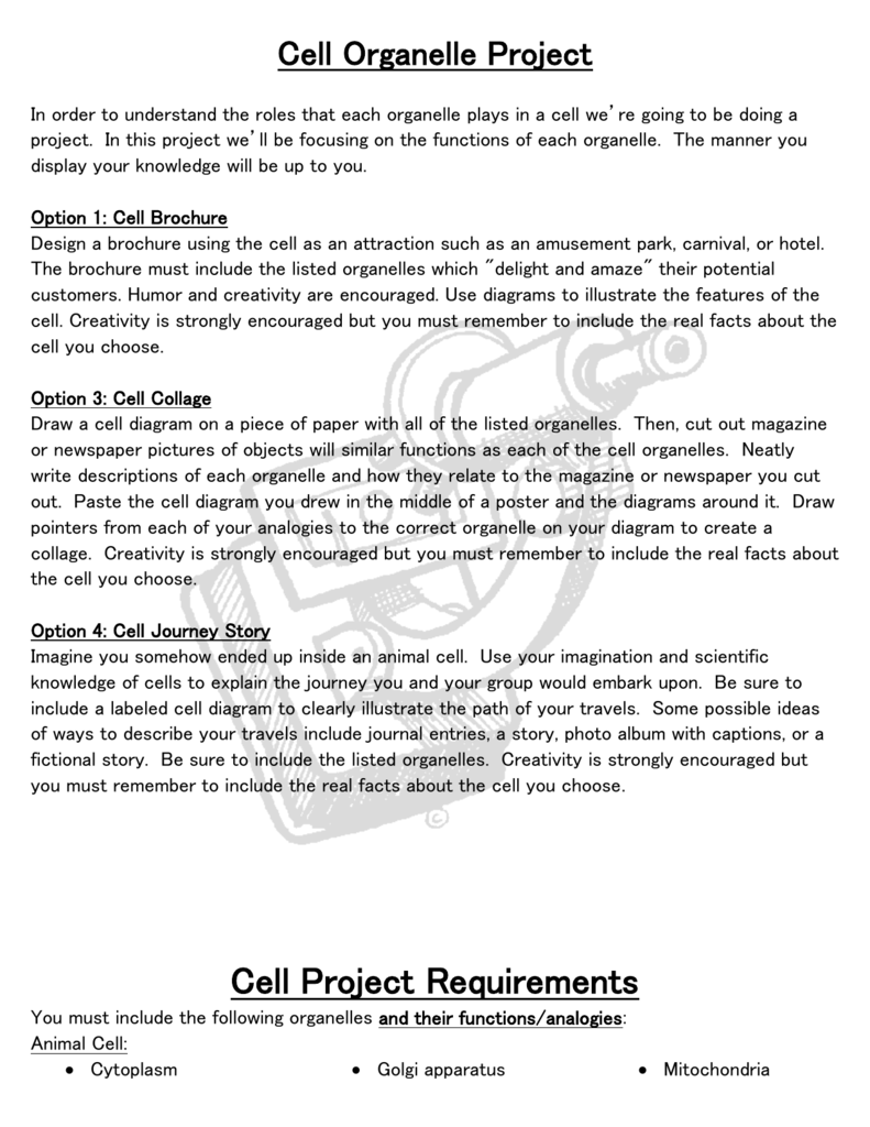 Cellorganelleprojecthandout