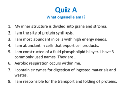 Quiz A What organelle am I?
