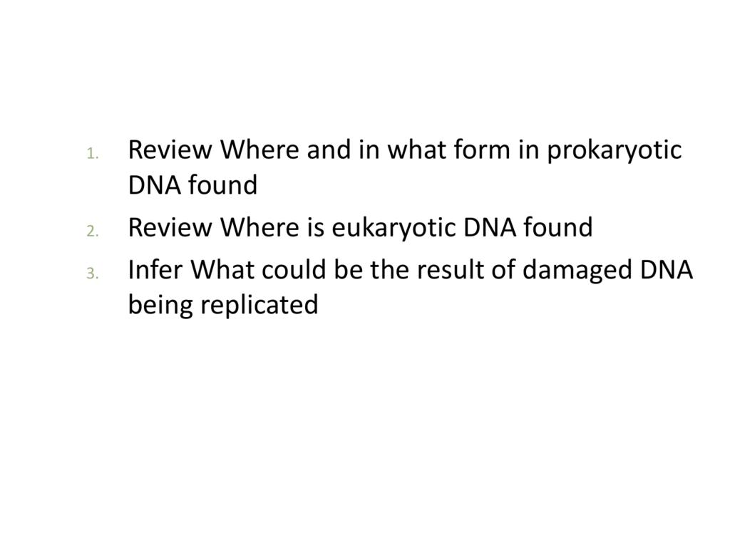 12.3 dna replication homework