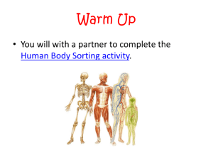 Human Body Systems. Click here for this week's notes!
