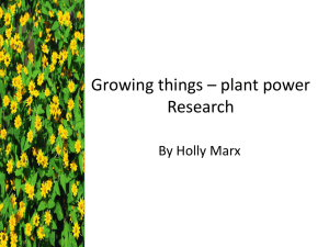 Growing things * plant power Research