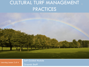 Cultural turf management practices