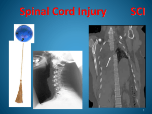 Spinal Cord Injury Snap II