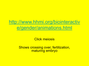 http://www.hhmi.org/biointeractive/gender/animations.html