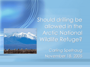 PowerPoint Presentation - Should drilling be allowed in the Arctic