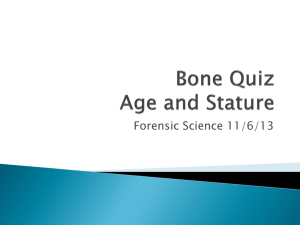 Bone Quiz Age and Stature