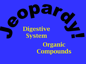 Digestive system jeopardy review game