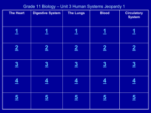 Civics – Unit 1 Jeopardy