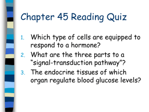 1. Describe how and in what ways the endocrine system and the