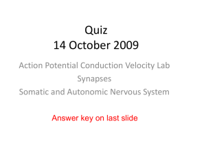 Autonomic Nervous System Lecture Slides