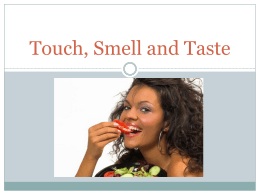 Touch, Smell and Taste - Chadwick School | Haiku Learning