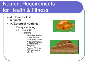 Nutrient Requirements for Health & Fitness