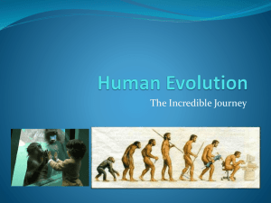 Human Evolution - Trial-for-file
