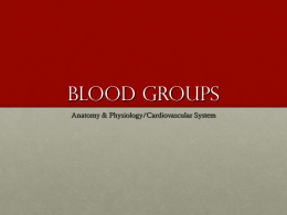 Blood Groups PPT