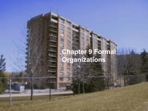 Chapter 9 Formal Organizations