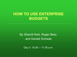 How to Use Enterprise Budgets