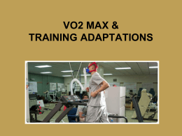 VO2 Max & Cardio Adaptations review