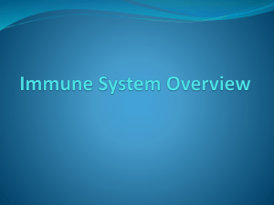 Immune System Overview
