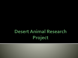 Desert Animal Research Project Introduction to Unit