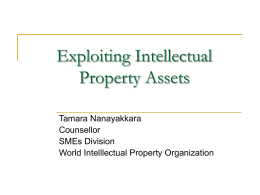 Exploiting Intellectual Property Assets