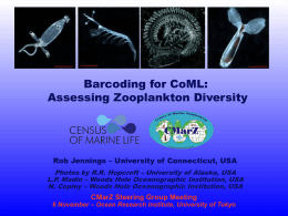 Jennings_- DNA_Barcoding - Census of Marine Zooplankton