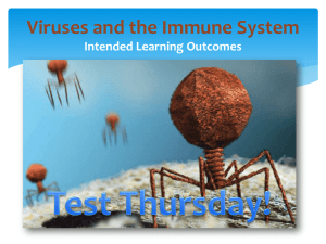 Viruses and the Immune System