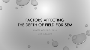 Factors affecting the Depth of Field for SEM