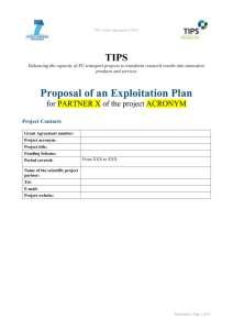 Exploitation plan including action plan and timing