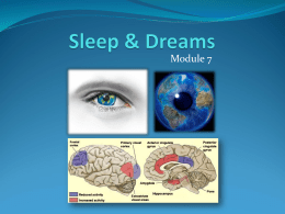 Sleep & Dreams - Wohlmuth@Weebly