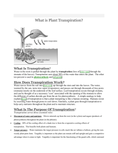 What is Plant Transpiration-Handout