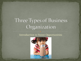 Three Types of Business Organization