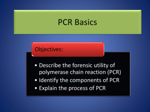 PCR Basics - Mr. Wells' wikispace