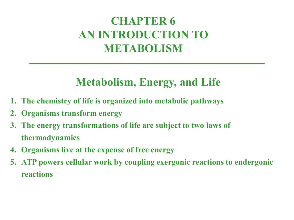 Free Energy Pogil Answer Key Ap Bio ~ Going Green
