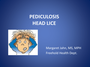 Learn About Head Lice