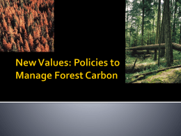 Conclusions - FRST 523 – Forest and Environmental Policy