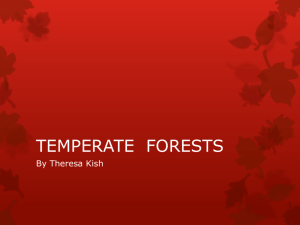 Kish_TEMPERATE FORESTS