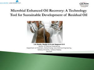 Microbial Enhanced Oil Recovery-Laboratory Experiments with a