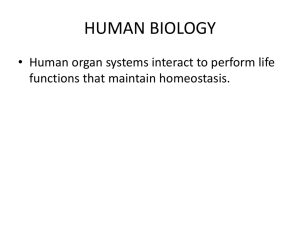human biology - Pleasantville High School