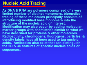Polymerase Chain Reaction End Labeling, Nick & Replacement, etc.