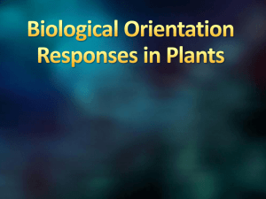 Biological Orientation Responses in Plants