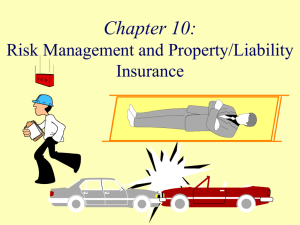 Risk Management And Property/Liability Insurance