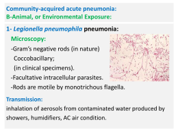 Community-acquired acute pneumonia: B