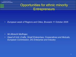 Opportunities for ethnic minority Entrepreneurs