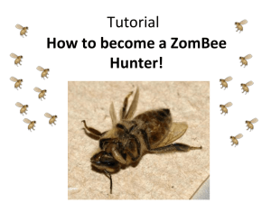 Tutorial - ZomBee Watch