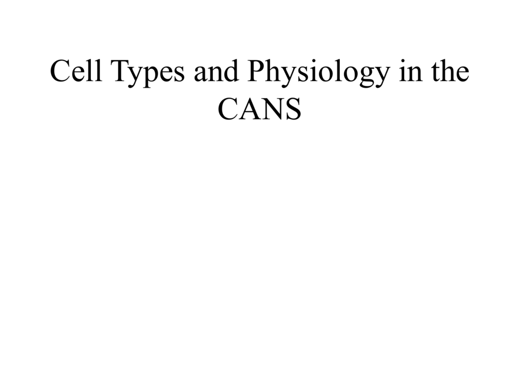 Cell Types and Physiology in the CANS